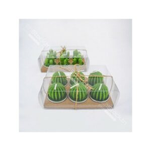 Lot de deux packs bougies cactus